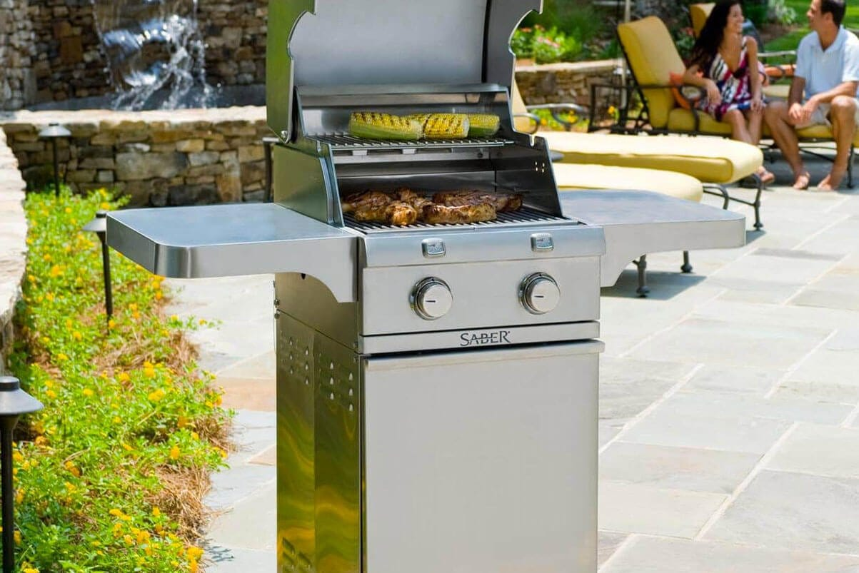 Cast Stainless 330 2-Burner Propane Gas Grill
